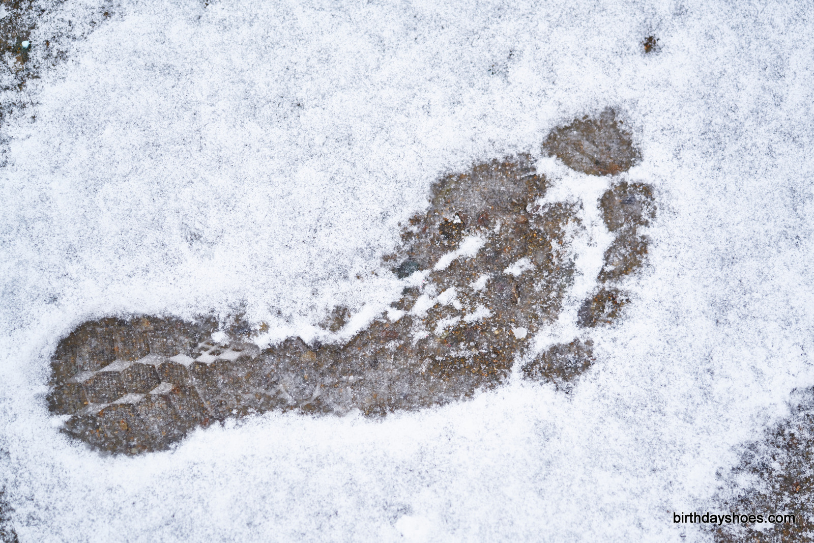 A primal footprint. There must be a fast yeti somewhere in beantown