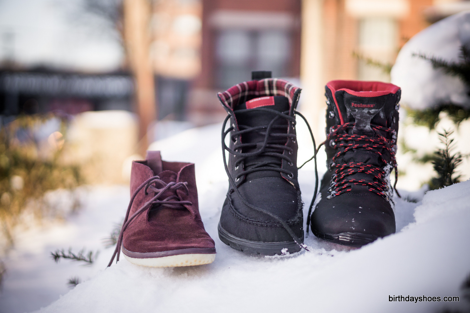 From left to right, the VivoBarefoot Gobi, the Lems Boulder (in black), and the Kuuva 3.