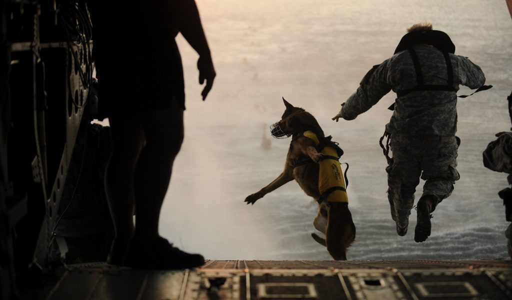 A U.S. Army soldier with the 10th Special Forces Group and his military working dog jump off the ramp of a CH-47 Chinook helicopter from the 160th Special Operations Aviation Regiment during water training over the Gulf of Mexico. Tech Sgt. Manuel J. Martinez/defense.gov